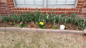 How To Start A Flower Garden In Your Backyard The Almanack A Blog And Downloadable Garden Journal And Almanac