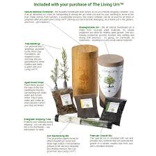 living pet urn grow a tree in memory of your pet