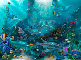 Murals Your Way by Dolphin Wallpaper For Walls Crowdbuild For