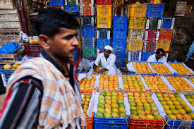 mango season has india in thrall the new york times