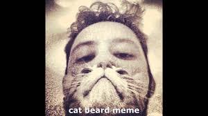Cat Beard Meme - cat beard meme awesome cat beard meme youtube