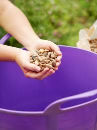 how to prepare a container garden hgtv