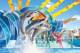 Sea World San Antonio Map by 100 Seaworld Dining Pass Studio Suite Near Disney U0026 Sea