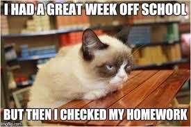 Cheezburger Meme Builder - grumpy cat meme generator the best cat 2018