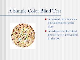 Red Green Color Blindness Tests Web Design For Color Blind Users Presented By Rajalekshmy Usha Hci