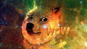 Doge Meme Wallpaper - doge wallpaper qygjxz