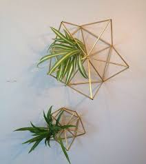 Hanging Wall Planters Best 25 Brass Planter Ideas On Pinterest Plant Decor Indoor