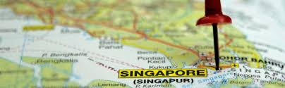 essential tips for visitors to singapore