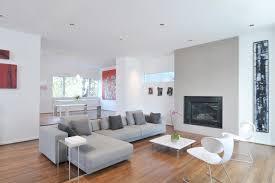 Pillows For Grey Sofa Living Room Astonishing Contemporary Living Room Near Grey Sofas