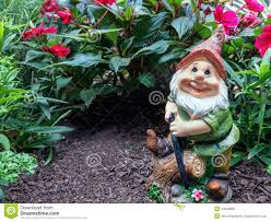 Garden Nome by Garden Gnome Stock Photo Image 34943800
