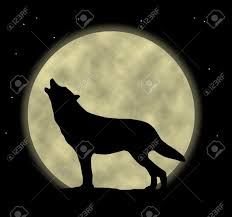 an illustration of a wolf howling at the moon stock photo picture
