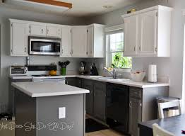Painting Kitchen Cabinets Ideas Home Renovation Cabinet Collection In Kitchen Cabinet Paint Stunning Kitchen