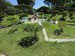28 tiny houses wiki file tiny house jpg file bohdane芻