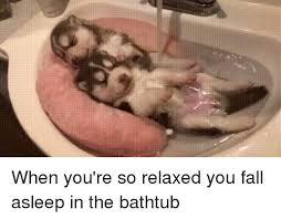 Dogs In The Bathtub 25 Best Memes About Bathtub Bathtub Memes