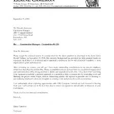 it director cover letter examples example sample management cover