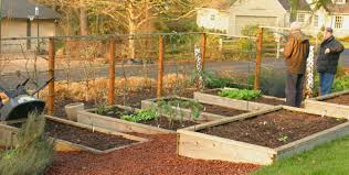 Fall Vegetables Garden by Fafardsmart Vegetable Garden Resolutions U2014plan To Succeed