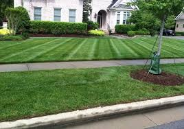 Done Right Landscaping by Lawn Maintenance Done Right Gold Star Landscaping