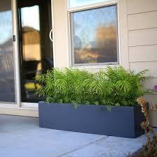 Tall Galvanized Planter by Low Profile Planter Boxes Fiberglass 12