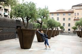 big planting pots instavite me