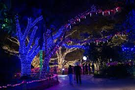 Zoo Lights Houston Zoo Fun Christmas Things To Do Around Houston