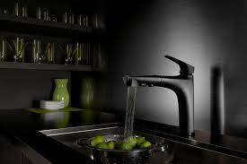 Grohe Kitchen Faucets Reviews Furniture Fascinating Danze Kitchen Faucets For Kitchen Ideas