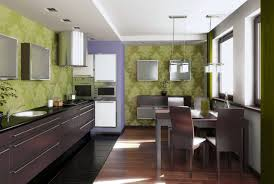 best green wall background of modern small kitchen design