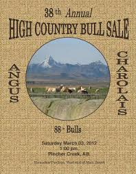 high country bull sale by charolais banner issuu