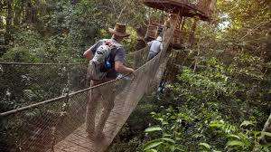 amazon to the andes in peru south america g adventures