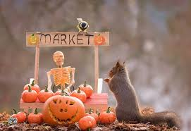 these 10 images shows how squirrels are celebrating halloween