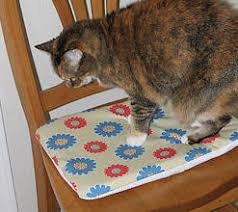 Non Slip Chair Pads Non Slip Seat Pad And Cover Pattern