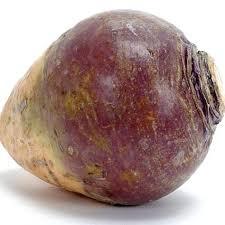 A Root Vegetable - for vegans u0026 vegetarians u201cforgotten u201d vegetables 1 24 shizuoka
