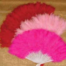 feather fans feather fan toys for