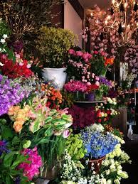 flower places 473 best flower places images on flower market