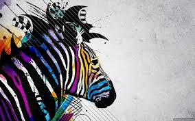 colorful zebra creative wallpaper wallpapers new hd wallpapers