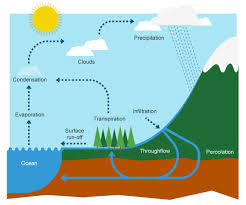 bbc bitesize ks3 geography the water cycle and river