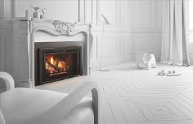 100 fireplaces inserts northstarcolorhighresphotojpg