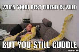 Funny Best Friends Memes - best friend memes to keep your friendship strong
