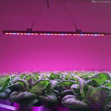 Indoor Plant Light by High Power Waterproof 81w Led Bar Grow Light Led Light Tube Red