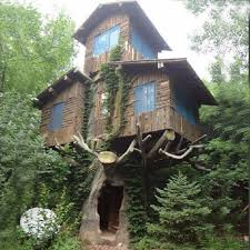 Tree Houses Around The World 15 Of The Most Amazing Treehouses From Around The World