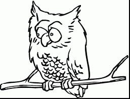 wonderful cute owl coloring pages with coloring pages of owls