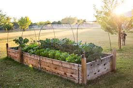 Garden Box Ideas Decor Tips Outdoor Design With Raised Garden Beds And Climbing