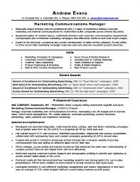 Professional Resume Example by 25 Best Professional Resume Examples For Your Next Job
