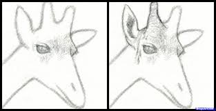 how to draw a giraffe head step by step safari animals animals