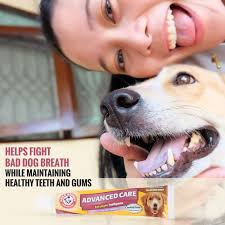 amazon com arm u0026 hammer advanced care enzymatic toothpaste for