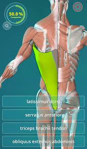 Human Ear Anatomy Quiz Anatomy Quiz 3d Human Android Apps On Google Play