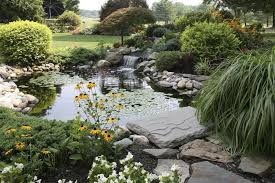 designing a feng shui koi fish pond lovetoknow