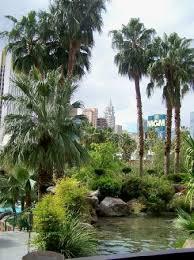 Outside Weddings Courtyard Garden Weddings In Las Vegas Tropicana Lv Weddings