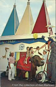 How Many Flags Have Flown Over Texas Gorillas Don U0027t Blog More Vintage Postcards From Six Flags Over Texas