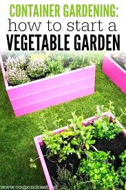how to start a vegetable garden for beginners vegetable gardening michigan bass front yard was torn up after