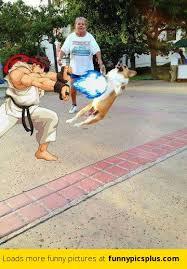 Hadouken Meme - 8 best hadouken memes funny pictures